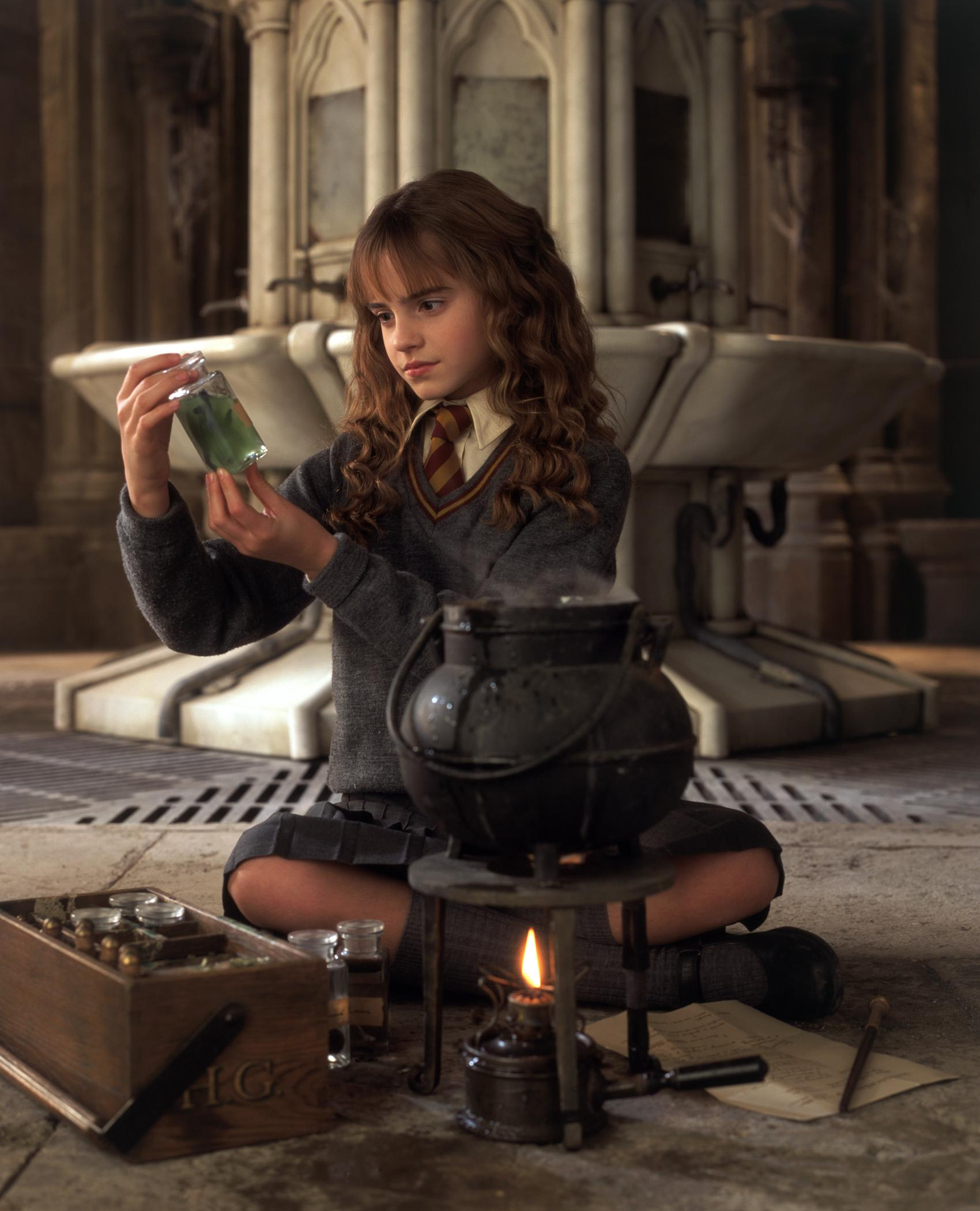http://gabtor.files.wordpress.com/2010/10/harry_potter_and_the_chamber_of_secrets_2.jpg