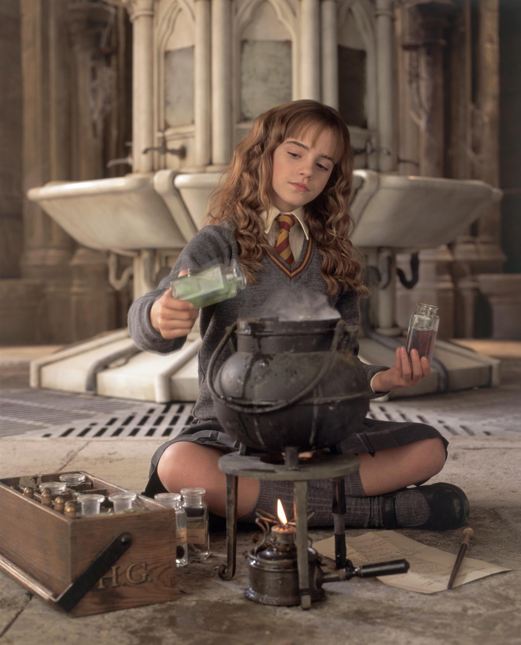 Emma watson chamber of secrets upskirt