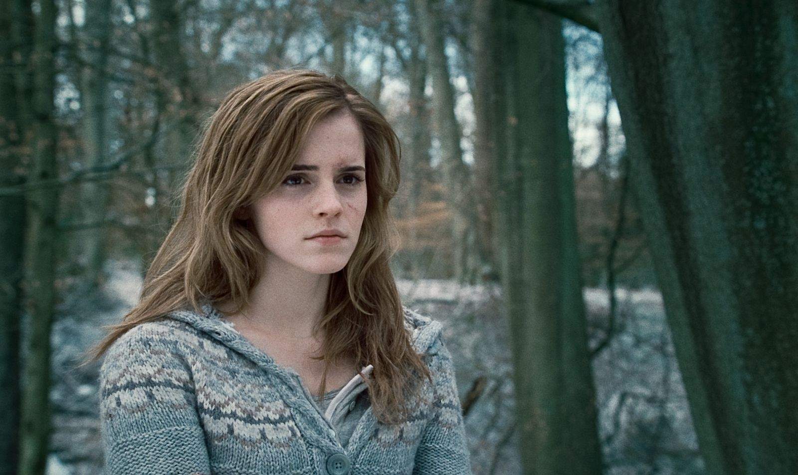 harry potter essay deathly hallows Hp_essays is a community dedicated to essays, discussion and analysis of the harry potter books and movies  deathly hallows goblet of fire half-blood prince.
